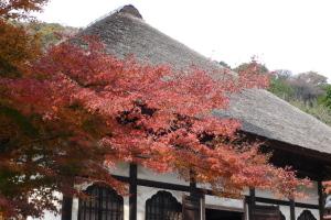 北鎌倉 圓覚寺