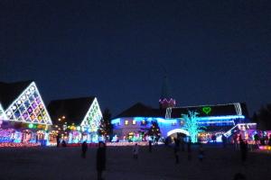 東京ドイツ村のライトアップ